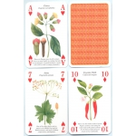 Especias - Spices playing cards