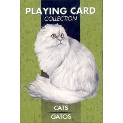 Gatos - Cats playing cards