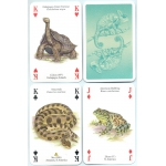 Reptiles y Anfibios - Reptiles & Amphibians playing cards