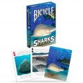 Sharks Bicycle playing cards
