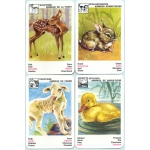Animales Cachorros - Puppies Animals playing cards