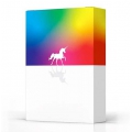 Unicorn deck playing cards Cardistry