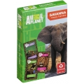 Animal Planet Savanna playing cards