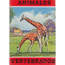 Animales Vertebrados - Vertebrate Animals playing cards