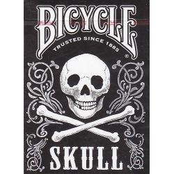Skull Bicycle